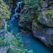 Avalanche Creek - 1st Place - Novice - Emily Harrington
