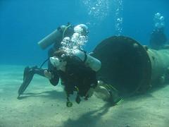 IMG_0480 (acmt2001) Tags: sea fish coral underwater  redsea scuba diving reef eilat aquasport