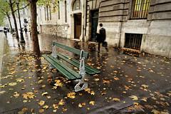 L' automne  Paris (Paolo Pizzimenti) Tags: paris film automne paolo pluie olympus dxo rue zuiko banc feuille pellicule