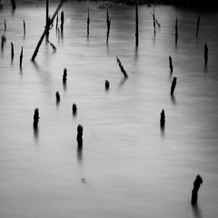 Poles - bang saen - thailand (funkytravel) Tags: longexposure sea panorama white black art nature water landscape asian thailand photography asia southeastasia fineart picture asie poles waterscape bangsaen blurmotion shellpark
