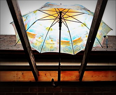Vacation Dreams on a Rainy Day (Sue, Toronto) Tags: toronto umbrella ship kensington