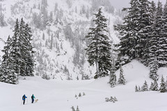 (Jason Matkowski) Tags: ski baker skiing powder mountaineering bellingham wa backcountry pnw mtbaker northcascades skitouring skitour jasonmatkowski
