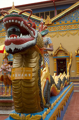 Malaysia (scuba_dooba) Tags: malaysia malaya se asia sea film scan scanner epson gt7000 gt 7000 flatbed chinese temple reel11 plustek opticfilm 7600i 7200dpi wolf faust vuescan kodak ektachrome 200 nikon fe