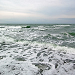 Ostseestrand unterhalb der Kreidefelsen bei Stubbenkammer auf Rügen (01) thumbnail