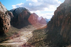 February (α RAINYNEPTUNUS ω) Tags: winter cliff analog utah sandstone desert cliffs zion zionnationalpark redrock analogphotography desertlife desertrocks desertwinter