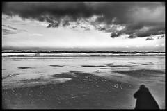 shame on a nigga who try to run game on a nigga (superstarfighter) Tags: ocean sea beach monochrome 35mm landscapes blackwhite shoreline northsea ostfriesland sw fujifilm langeoog nordsee niedersachsen lowersaxony eastfrisia eastfrisianisland