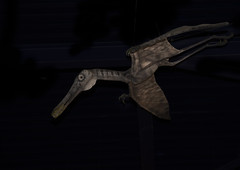 pterosaur (Stewart485) Tags: england stilllife museum dinosaur places things isleofwight impression pterosaur evocative