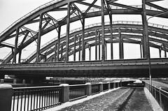 near the bridges (korolland) Tags: city bridge winter blackandwhite snow monochrome river frozen blackwhite frost bridges american saintpetersburg