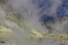 4N4A0115-1 (Doc. Di0) Tags: new newzealand white toxic danger canon island volcano smoke adventure explore zealand crater active fume whiteisland activevolcano canon5dmk3 5dmk3
