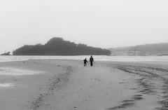 sin ttulo-16.jpg (@bomeor) Tags: espaa playa rasbaixas galicia pontevedra