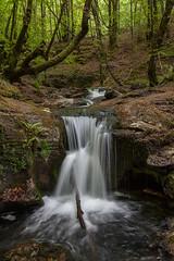 Cascadas en Donamaria (martin zalba) Tags: falls navarra cascada cascadas donamaria
