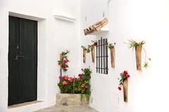 Vejer de la Frontera (antoniofmg) Tags: street door flowers espaa flores window ventana calle spain puerta cadiz vejerdelafrontera