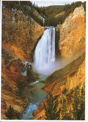 postcard of Lower Yellowstone Falls, Wyoming USA (johnjennings995) Tags: usa waterfall postcard yellowstone wyoming lowerfalls yellowstonelowerfalls