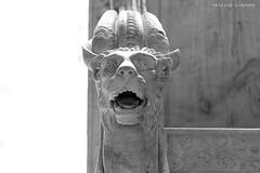 L1008775 (LaBonVampire) Tags: leica paris france art museum zeiss louvre culture carlzeiss zm leicam8 teletessart485 teletessar85