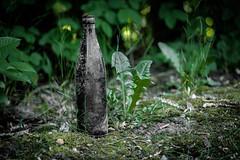 gebaut fr die Ewigkeit (mkniebes) Tags: old green bottle flora dof bokeh aged