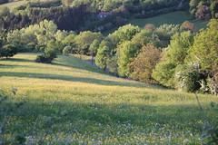 La maison au creux du vallon. (Diké) Tags: nature de la images sortie campagne printemps nouvelle ballade lieux année première 2015 bienêtre simplicité ruralité tranquilles brök dikée