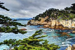 The Cove (joe Lach) Tags: pointlobosreserve cove montereybay monterey california pacificocean cypresstrees cliffs water waterpictorial rocks joelach