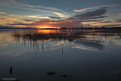 Reflections (Massimo_Discepoli) Tags: sunset sky italy water clouds mirror umbria trasimeno
