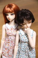 Twins (AluminumDryad) Tags: twins doll bjd resin fairyland msd balljointeddoll mnf minifee rheia slimmini