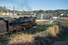 """Kiama Picnic Train"".  5917 waits to roll onto the Kiama Turntable, Illawarra Railway, NSW, 29th May, 2016. (garratt3) Tags: aus rail steam lachlanvalleyrailway standardgauge 59class kiamapicnictrain nswheritage steamloco railway railways locomotive australia nsw railfan steamlocomotive steampower nswgr illawarra southcoast newsouthwales"