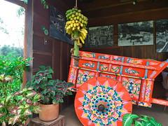 P1140602 (lychee_vanilla) Tags: costarica heredia coffeetour cafbritt