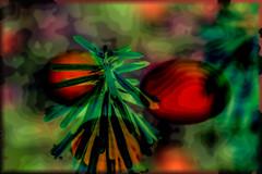 Combinacin XIX. En verde (seguicollar) Tags: planta red rojo green verde abstraccin abstracto patrones virginiasegu photomanipulacin imagencreativa