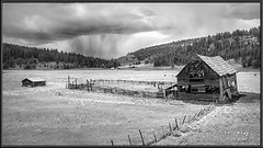 incoming (Maclobster) Tags: ranch cloud rain farm thunder