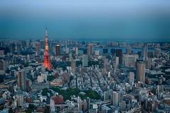 Tokyo Tower view from Roppongi Hills (Harry J. Bauer) Tags: sunset sky japan sonnenuntergang himmel tokyotower roppongihills toyko minato moritower tokio observationdeck shibapark aussichtsplatform