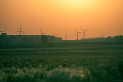 Wind farm near Albert Lea (michaelraleigh) Tags: sunset sun green field minnesota canon landscape windfarm windpower longshot infocus windgenerator albertlea 100300mm f56l