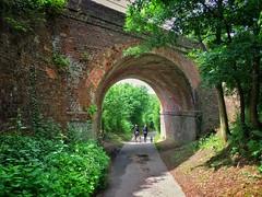 Under the Bridge and into the Sun (AndyBailey) Tags: bridge dog dogs arch walk surrey albury 2016