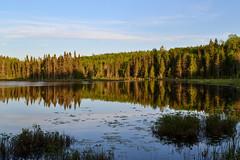 Reflet sur le lac (pascal_roussy) Tags: canada nature water landscape nikon eau lac reflet qubec paysage gaspsie d3100