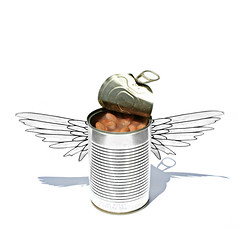 anche gli angeli mangiano fagioli (brescia, italy) (bloodybee) Tags: 365project anchegliangelimangianofagioli evenangelseatbeans movie cinema budspencer actor tribute bean food tin can wings angel stilllife white grey gray metal shadow square