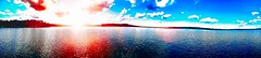 Surrounded. (carterdalbey) Tags: summer panorama lake apple nature minnesota skyline digital forest landscape photography flare mn edits iphone minnesotaphotographers captureminnesota