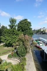 Square du Vert-Galant @ Ile de la Cit @ Paris (*_*) Tags: park city summer paris france june seine island europe parc iledelacite 2016