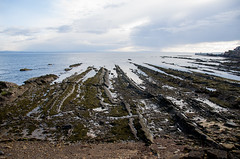 Coast at Pittenweem (Chalto!) Tags: eastnuek fife pittenweem soctland shore coast rock rocky sea