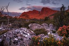 Ben Lomond sunset (Rich Morrison) Tags: park sunset mountain nikon ben australia national tasmania misery heights lomond bluff markham samyang d5000