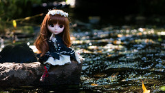 The river of dragonflies (MintyP.) Tags: pullip doll poupe jun planning shinku 2006 kotori obitsu s animal eyes outfit merl whispering island groove sony nex 6 58mm helios minty mintyp photography 444 river dragonflies