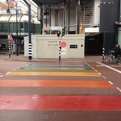 Rainbows and Nijntje (indigo_jones) Tags: holland rabbit netherlands lamp dutch rainbow streetlight utrecht nederland miffy symbols gaypride bijenkorf regen equality zebracrossing nijntje vredenburg dickbruna rainbowcrossing streetcrossig