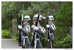 2016-07-09_002 (Aaron Cat) Tags: macro canon soldier eos usm taoyuan  ef100mm cihu  400d aaronhsu