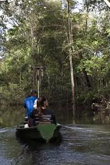 _TEF6503 (Edson Grandisoli. Natureza e mais...) Tags: rio barco antena colar pintada ona rdio pesquisa amaznia solimes vrzea monitoramento regionorte pesquisador rdiocolar