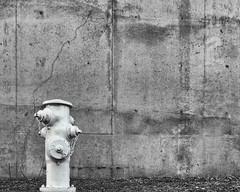 White Fire Hydrant_6280377_DxO copy (pringlek) Tags: street bw hydrant industrial