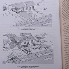 #rainwaterharvesting by Brad Lancaster ... #drainage #runoff #waterretention #waterharvesting #cistern #urbanlandscape #landscaping #landscapedesign #slowspreadsink #rainwater #catchment #Permaculture (Heath & the B.L.T. boys) Tags: instagram permaculture landscaping