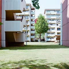 (masaaki miyara) Tags: life red tree green 6x6 film grass japan spring apartment may 66 squareformat medium yokohama kanagawa      hasselblad500cm  kodakportra400 2013