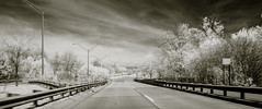Long and white roads (Mikelink00) Tags: road trees sky white black cars ir carretera pavement michigan troy infrared roads 241 2391 2401
