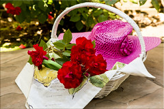 Simply the Rose (Jill Clardy) Tags: life pink red white plant hat rose garden still lemon backyard basket napkin straw sunny days pruning shears day130 day130365 3652013 365the2013edition 10may13 4b4a7527