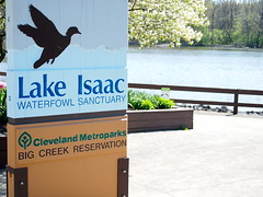 Lake Issac (Raccoon Photo) Tags: park wood flowers ohio wild lake green bird love nature beautiful beauty leaves birds animal animals loving reflections walking fun spring nice pond woods warm day natural metro walk wildlife birding may parks trails growth trail reflect buds growing bud ponds magical budding walkinginnature issac wooded qualitytime niceday daysoff lakeissac