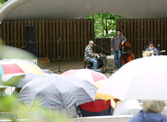 The Jeff little Trio (DaBrain) Tags: park music jeff rain umbrella scott concert little bluegrass bass guitar outdoor live steve amphitheatre piano lewis banjo josh stuff fred bond trio pinecone cary usic sertoma