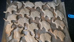 The elephants on parade. (Jenimartian) Tags: biscuits elephants rivercottage flickrandroidapp:filter=none appleandspeltstars