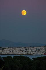 Paros Island, Greece (Ioannisdg) Tags: 2005 travel summer vacation holiday color beautiful island greek colorful europe flickr hellas greece paros gof ellada egeo vavatio ioannisdg ioannisdgiannakopoulos