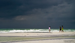 Seista-Key (Man In The Woods) Tags: beach gulfofmexico scenery florida stormy seistakey georgesimpkins